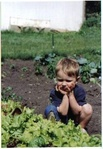 Quincy ponders lettuce