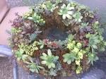 Wilcox Wreath